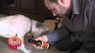 Bowswer Beer - Beer for Dogs Review