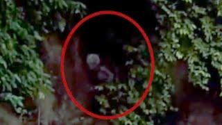 Shocking Alien Footage | Unexpected Ghost Sighting Caught On Camera | Ghost OR Alien | Scary Videos