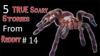5 TRUE Scary Stories From Reddit # 14