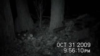 """EVP-Gettysburg Grove Southern Voice & """"Rebs"""" - Harrisburg Ghost Hunters"""