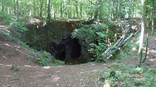 EXPLORING UNMARKED PATH | INTO THE BEAR'S LAIR!!.ENG SUBS