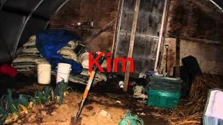evps Green House by Kimberley .wmv