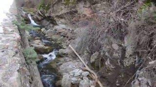 Bigfoot Sighting in Utah Payson Canyon Send In