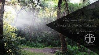 Tajemné Rumunsko: Duchové Hoia Baciu 2. část: Vyšetřování / Nejstrašidelnější les Evropy
