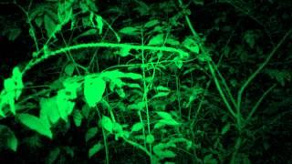 Ghost Hunters International - Rising From the Grave: Trinidad