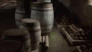 Fortress of Louisbourg - Artillery Storehouse voice - Caretakers Paranormal Investigations