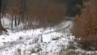 Caught On Film | Levitating Girl In Russian Forest