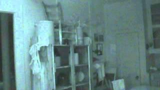 Wilson county jail museum: Ghost cat