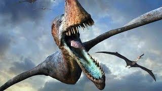 Modern Pterosaur Sightings Part 1