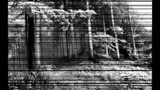 Sherwood Forest Ghost Hunt 2014