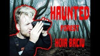 World's Most Haunted Forest - Hoia Baciu
