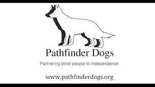 Pathfinder Dogs