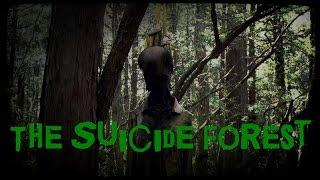 SCARY STORY - Episode 30 - The Suicide Forest