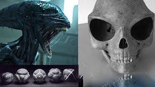 5 Criaturas Alienígenas Captado en Video y Visto en la Vida Real