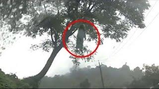 Ghost Hanging On Tree | Real Ghost Caught On Camera | Best Scary Videos