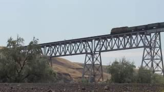 Train Snake Over The Snake River At Lions Ferry 7/15/17