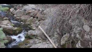 Bigfoot Sighting in Utah Payson Canyon Zoomed Stabilized enhanced