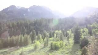 Bigfoot Sighting American Fork Canyon near Tibble Fork Reservoir On Scene Research