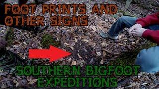 SOUTHERN BIGFOOT EXPEDITIONS: Footprints and Other Signs Compilation