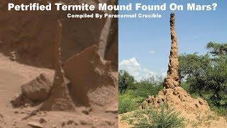 Petrified Termite Mound Found On Mars?