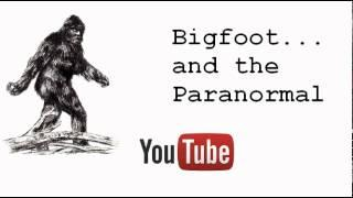 Woman who lived with bigfoots!  Radio interview