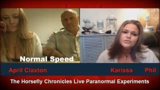 Horsefly Chronicles Experiments ANOMALY APPEARS on Live Broadcast