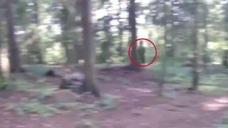 Scary Videos | BIG FOOT OR GHOST | Black Giant Ghost Like Figure Caught On Tape | Ghost Videos