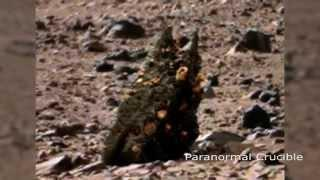 Monster Worm Found On Mars?