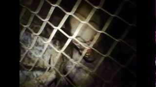 Fort Chaffee Haunted Prison