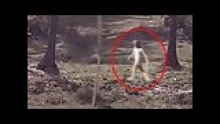 Scary Ghost Shadow Caught On Camera From A Haunted Isolated Place