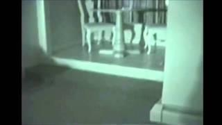 Flashlight Responses At Stanley Hotel By Texas Paranormal Investigations