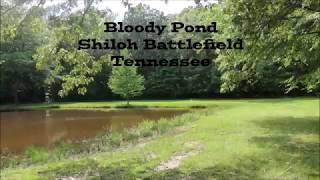 Shiloh Battlefield Bloody Pond - Disembodied Voices