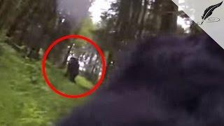 Bigfoot Captured In Oregon On GoPro Camera By Dog | Real or Fake?