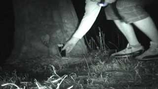 Margam haunted woods. Ghost Hunt