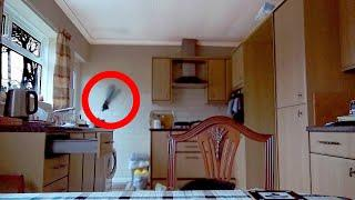Poltergeist Activity Caught on Camera.  Paranormal Clips 2019 #2