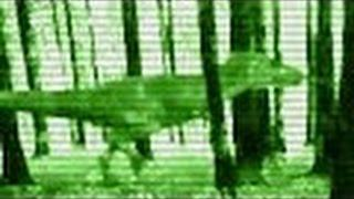 Alive REAL T Rex Caught On Night Vision Camera In Texas | Real Tyrannosaurus Rex Caught On Tape NEW