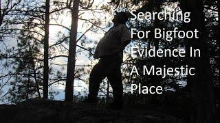Searching For Bigfoot Evidence In A Majestic Place