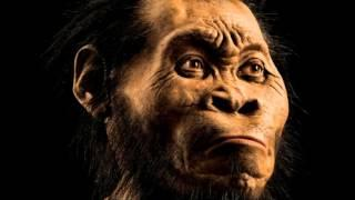 Homo naledi Hands, feet suggest 'jack of all trades'