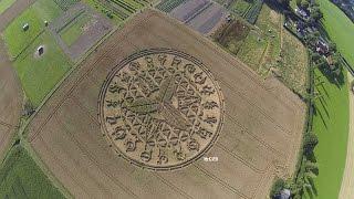 Crop Circle reported impressive in Salisbury, Wiltshire, United Kingdom