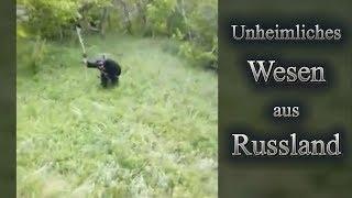 Hoax? - Wesen aus Russland