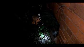 SCARY ABANDONED HOUSE:URBAN EXPLORING UK
