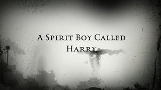 A Spirit Boy Called Harry | Haunted Doll | Session 1 |  ( Spirit Contact | Paranormal | Ghost  )