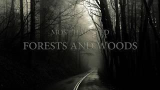 MOST HAUNTED FORESTS AND WOODS In the world | Real Paranormal Story | Scary Videos | Real Ghost