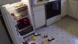 Ghost Caught on Tape Opening Refrigerator