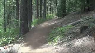 "Calaveras Big Trees Part 3 - ""Hiking The Upper Trail"""