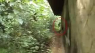 Huge Black Ghost Shadow Caught On Camera   Shocking Ghost Sighting From an Abandoned Place   YouTube