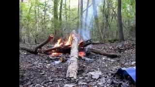 Swamp Camping Part 3