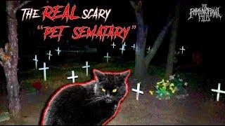 """The REAL """"PET SEMATARY"""" [FOUND Dead Animals!] (SCARY Pet Cemetery) 2019) 