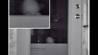 Small Alien Baby Peeking Through Door In Tennessee: Subscriber Send In