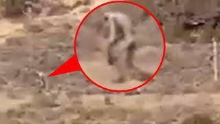 Most Shocking Video Ever!! Mysterious Creature Caught on Camera From an Abandoned Place